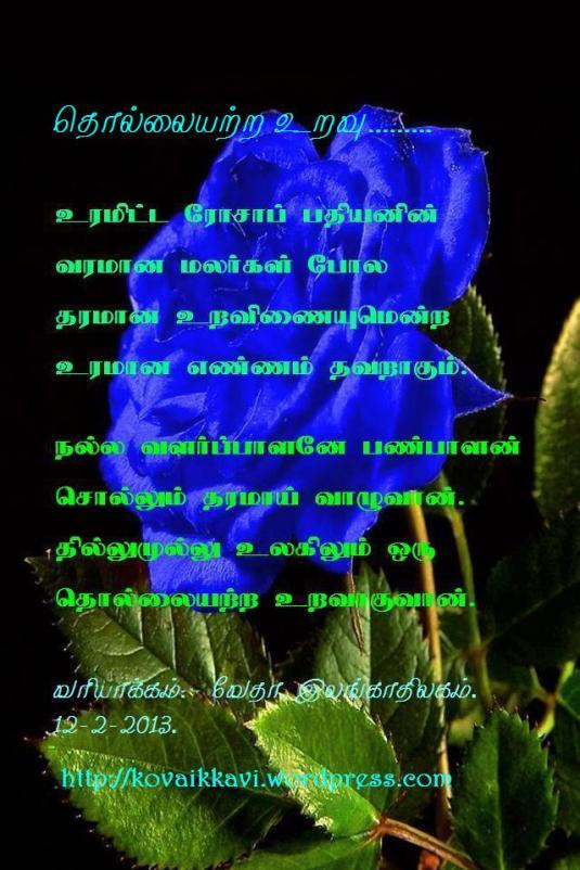 Beautiful-Blue-Rose-iPhone-4-Wallpaper[1]