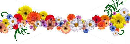 stock-photo-flower-line-for-border-and-frame-different-version-in-my-portfolio-11545657
