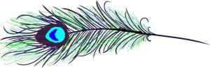 peacock-feather-line[2]b