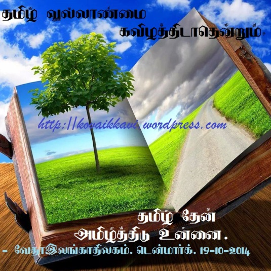 10494665_683233265086101_5352445299418082750_nff