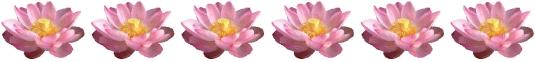 lotus-border