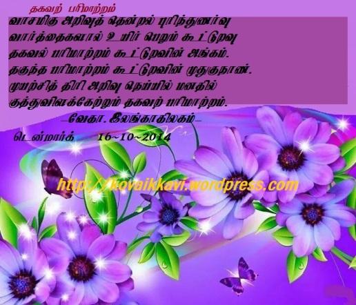 10616007_10153985337363647_5290647414907120377_nmgg