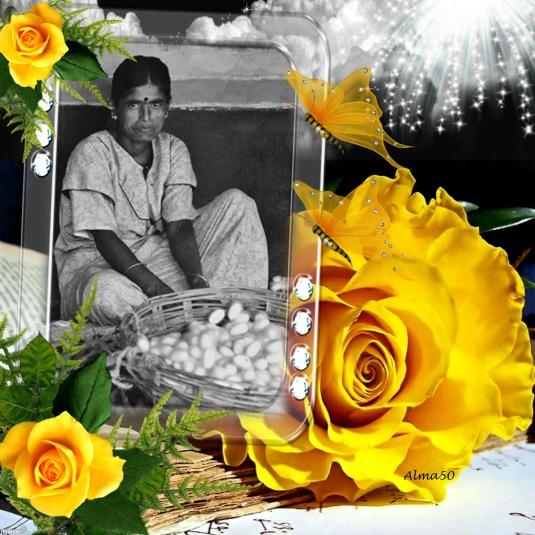 Yellow-Roses-Frame-2zxDa-1W14z-print