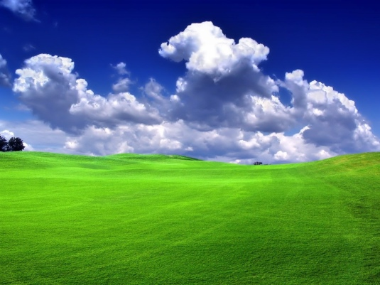 green-grass-hd-wallpapers-free-nature-images