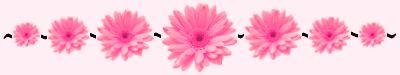 2008-7-6_11638_flower_divider_13793720_42120324_std