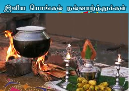 pongal_greetings_jalltkattu-jpg-22